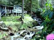 Click the picture to visit our Maggie Valley Cottage website - use your Back button to return to Timberwolf Creek.